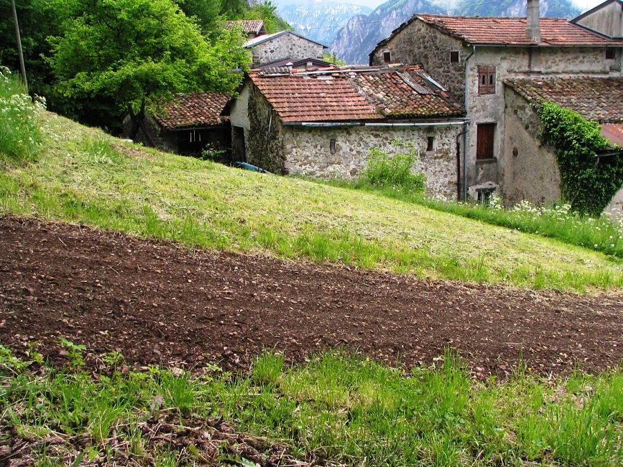 AgriKultura Alpina 2015